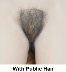 With Public Hair (+20usd)
